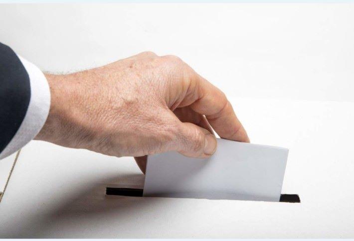 美國 11 月舉行中期大選