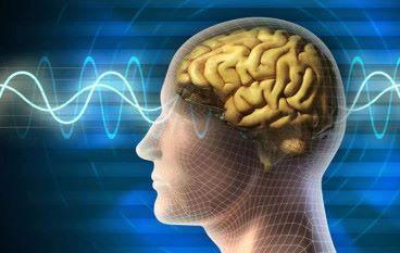BrainNet 實現腦間通信玩俄羅斯方塊