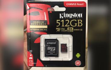 【場料】500GB 放乜好? Kingston microSD 高速登場