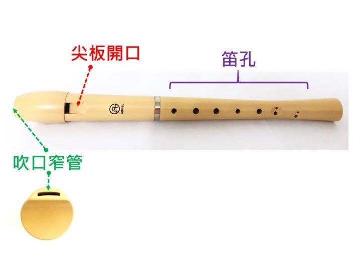 牧童笛的笛身上有 8 至 10 個笛孔,其中 2 個為半笛孔,因為笛孔較細,在吹奏時,指法需特別注意。