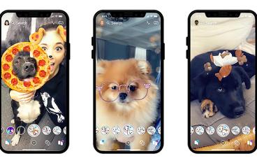 貓貓狗狗齊扮嘢 Snapchat 推出狗版 AR 濾鏡