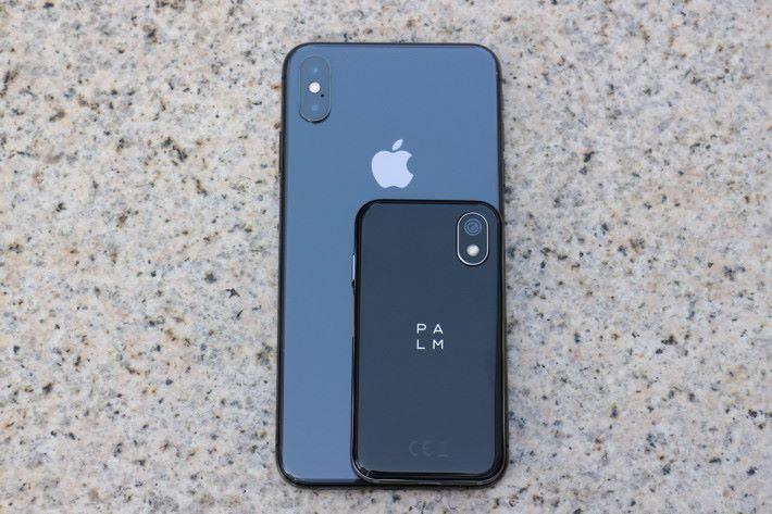 同 iPhone Xs Max 比較就知 Palm Phone 是何等細小