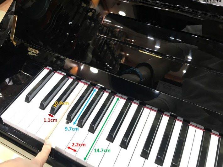 白色琴鍵呈長方形,寬度約 2.2cm ,長度約 14.7cm ;黑色琴鍵呈梯形,上方寬度約 0.9cm ,下方寬度約 1.1cm ,長度約 9.7cm 。