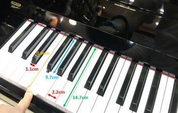 鋼琴彈出美妙 STEM 音樂