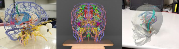 3DCG 檔案可以用來 3D 打印頭部結構模型,或者製作 AR 教學程式。