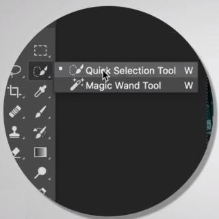 點選快速選取工具(Quick Selection Tool)。
