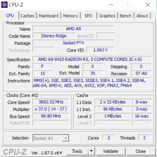採用 Stoney Ridge A9-9425,只有雙核雙線程。