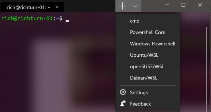 cmd 、 PowerShell 、 SSH 和各款 Linux WSL 可以共存在一個視窗裡面。