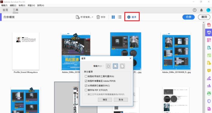 點選選項(Options)(見左圖紅框),選取要轉換檔案大小的各個選項: