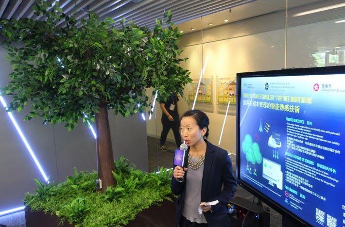 創新實驗室設置一棵裝有感應器、可搖動的模擬樹,示範如何將數據傳送到「樹木搖動監測控制台」,並以不同方式展示數據。