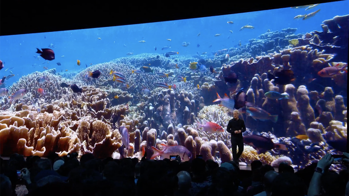 在 tvOS 中的保護屏幕模式加入海底世界,由 BCC 提供的「魚樂無窮」,香港用家可能會特別喜愛!