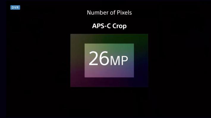 .使用 APC-S鏡頭時,A7RIV 會提供100%對焦覆蓋。
