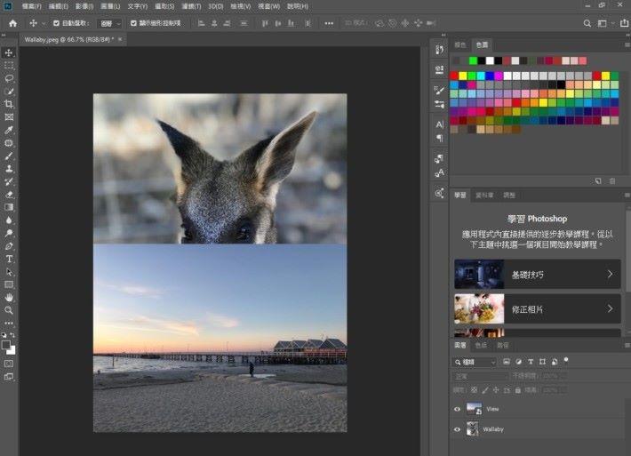 在 Photoshop CC 中開啟名為 Wallaby 的圖片(或自己準備的主體照片),將名為 View 的圖片(或自己準備的景色照片)拖拽至 Wallaby 圖片上。