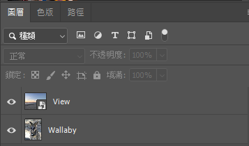 在圖層面板中,緊記將 View 放在 Wallaby 圖片之上。
