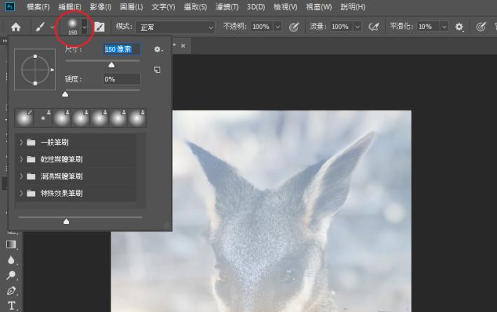 調整筆刷的尺寸(Size)至 150 像素,隨心使 Wallaby 圖層露出更多細節。
