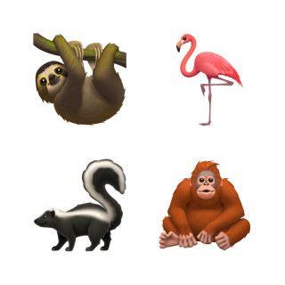 新增的動物:樹懶、紅鶴、鼬鼠、猩猩