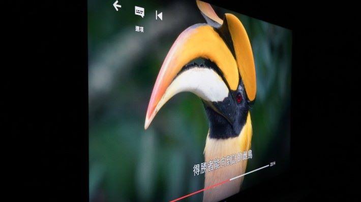 . OLED 電視的可視角度比 LCD 電視好,但具有X-Wide Angle 功能的 LCD 電視,側視表現同樣出色。
