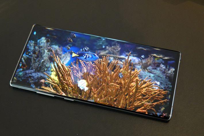 因開孔直徑比 Galaxy S10 細,其實 Galaxy Note 10 的 Edge to Edge Infinity-O Display 視覺效果是更佳。