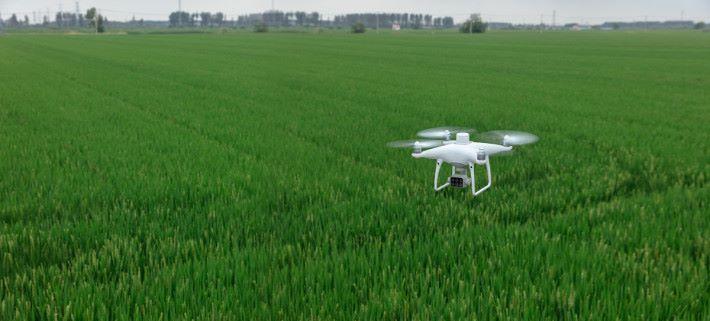 DJI 新無人機 P4 Multispectral 主要是為精準農業與環境管理而設。