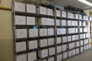 全級超過120個實驗種植箱,能供數學科進行統計分析使用,也可進行大數據分析。