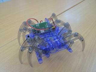 運用腦電波遙控器能控制機械蜘蛛。