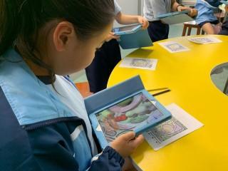 KBSJB靈活運用AR與VR技術於課堂中,圖中學生使用AR學習植物相關知識。