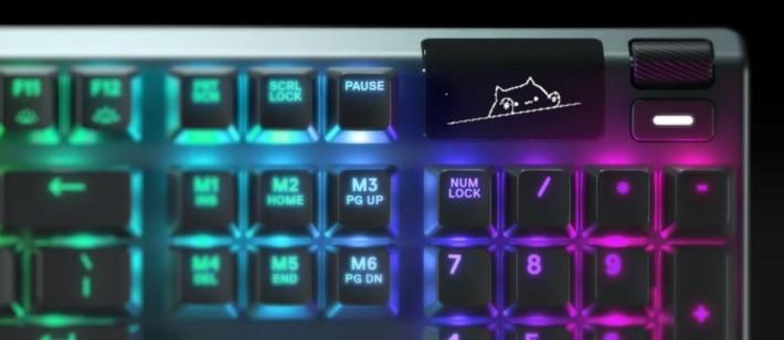玩家可利用 OLED 面版自訂喜歡的圖案,或與其他遊戲連動用作記錄信息