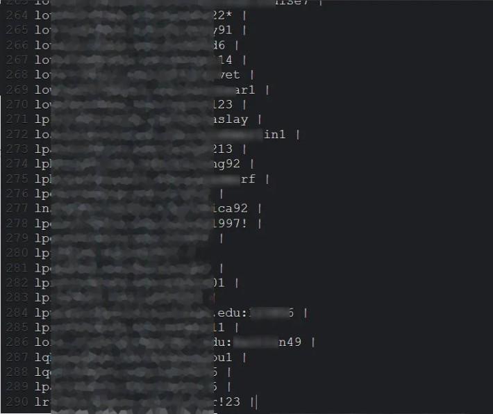部分免費發放的 Zoom 帳戶以純文字的方式發佈